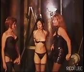 Les trois femelles