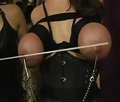 Lesbische fetisj scene wordt wild met tiet marteling