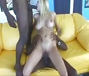 Une blonde baisée par deux grosses bites noires