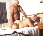 Two gay bears fucking