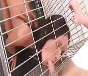 Eingesperrt, bestraft und gefickt