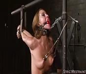 Castigo estricto para Scarlett Fay