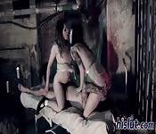 Kellermädchen lieben es gefickt zu werden