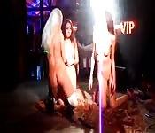 Três lésbicas excitadas com uma noite de sexo