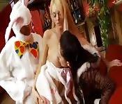 Deux chiennes et un lapin