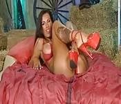 Super modelo, Trisha, de volta com um novo show de strip