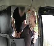 Una bella figona bionda inculata dal tassista