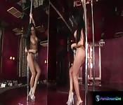 Exotic beauty Christina Bella solo sex