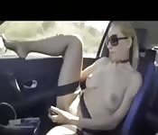 Plagen op de snelweg