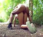 Sexo en medio del bosque