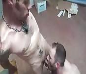 Sexo gay com duas rolas chupando e fudendo