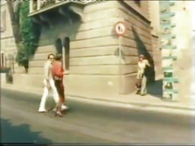 image La zorra británica danica juega consigo misma en un vasco verde